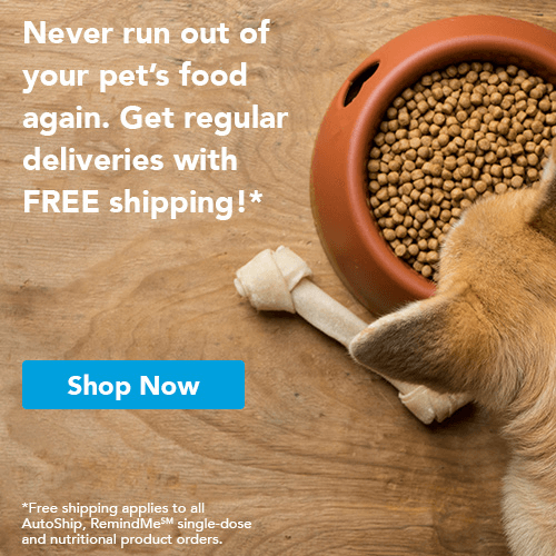 Never run out of your pet's food again. Get regular deliveries with free shipping! shop now